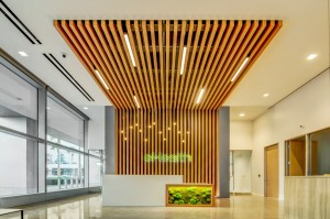 eHealth | GC: McLarney | Architect: Nelson Nelco Architecture